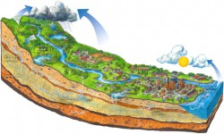 Watershed Diagram (MN Pollution Control Agency)