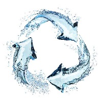 Recycle In Water