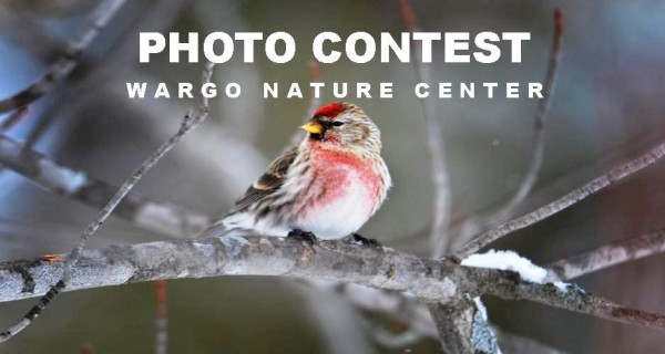 Wargo Photo Contest 2016
