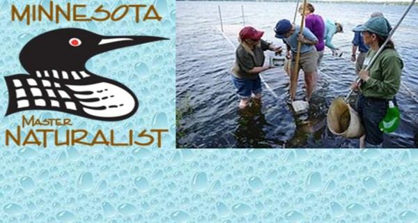 Minnesota Master Naturalist Program promotes awareness, understanding, and stewardship of our natural environment by developing a corps of well-informed citizens dedicated to conservation education and service within their communities.